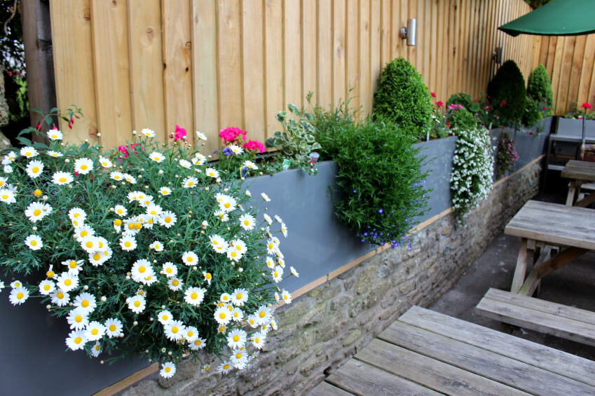 40 beautiful garden fence ideas for Privacy wall planter