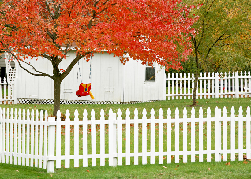 A white picket fence around a backyard with a small swing from one of the maple trees.