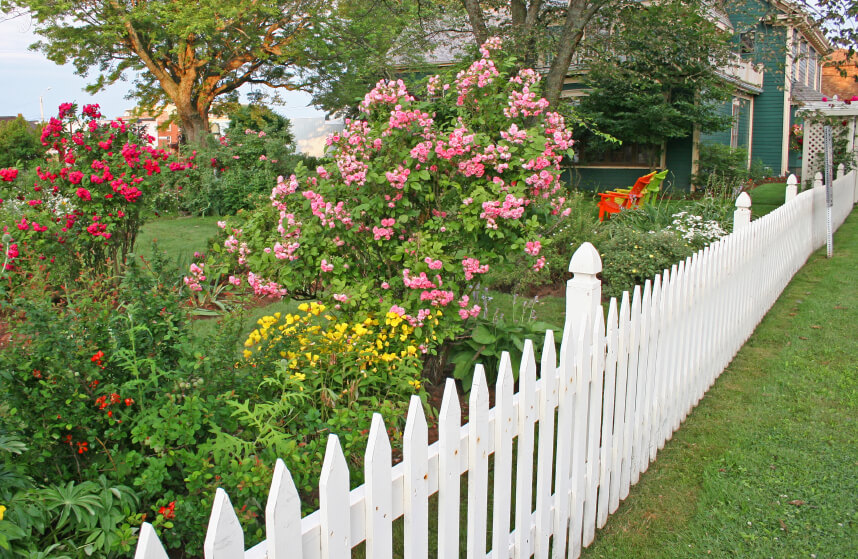 A white picket fence surrounding a beautifully landscaped backyard. The entrance to the interior of the yard is marked with a trellis.