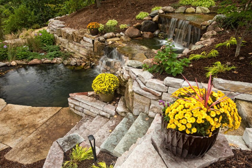 A view down the stone steps at the waterfall and pond. Large pots of yellow mums add a pop of color to the landscaping.