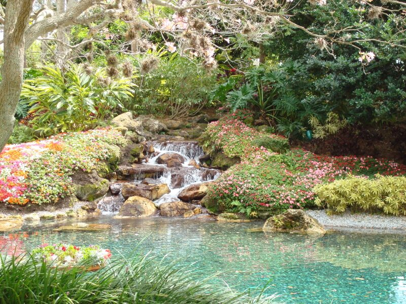 a floral carpet surrounds this beautiful waterfall which leads into a crystal blue pond - Waterfall Design Ideas