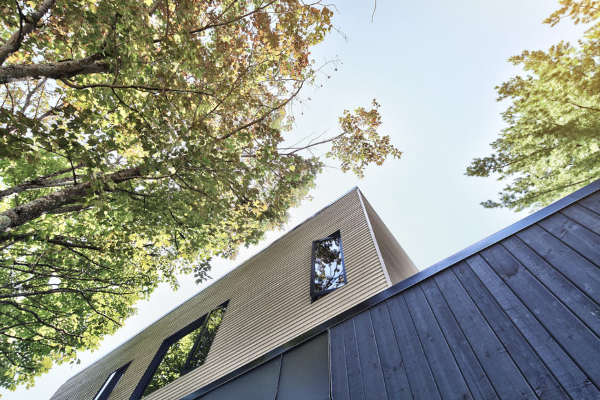 Looking up at the siding, we see the rich dark wood and lighter hued timber meshing for a complex, appealing exterior.