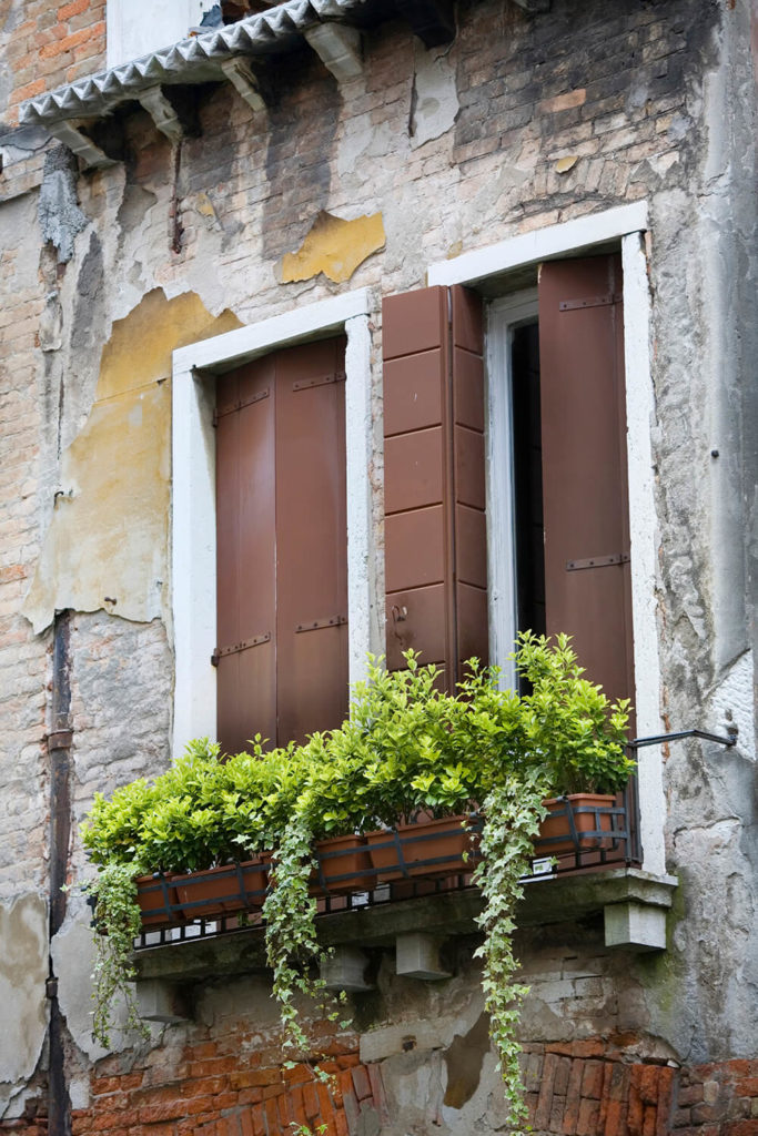 A window box filled with greens and ivy adds life to this dilapidated and crumbling old building.