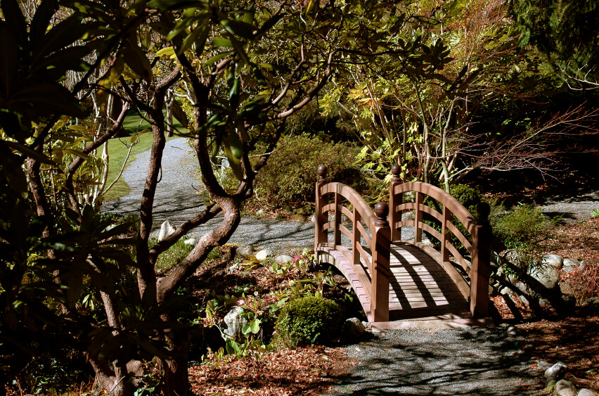 A small garden bridge spanning a small drainage ditch between two gravel walkways. While much of the garden is sunny and open, this small section is tucked into a small wooded area.