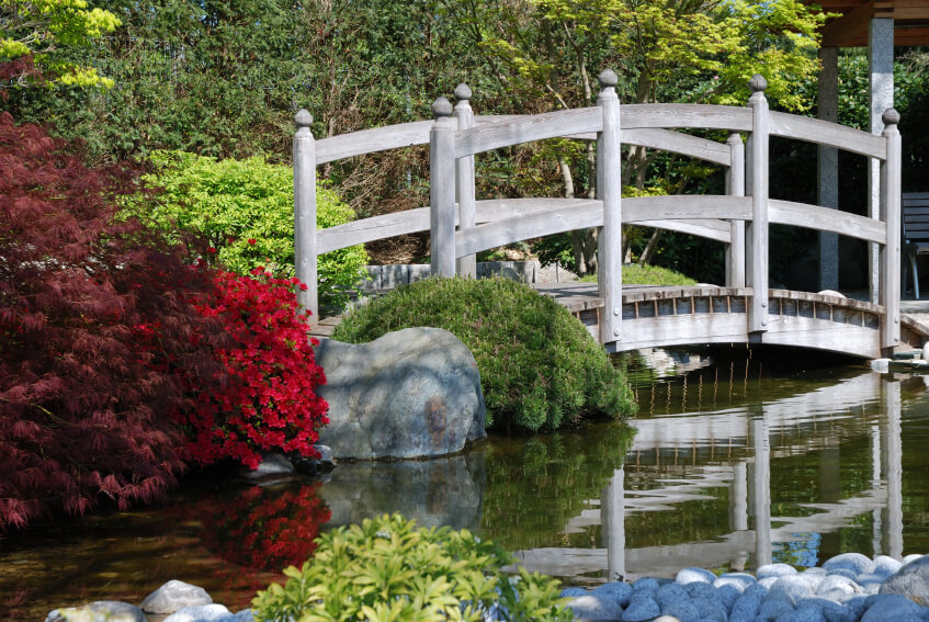 This lightly aged white wooden footbridge has a slight curvature as it rises above the calm flowing water. Brightly colored ornamental trees and bushes enshrine either side of the bridge.