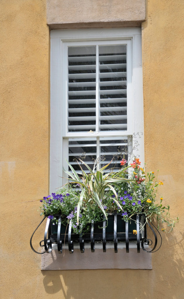 A wooden window box surrounded curved wrought iron bars.