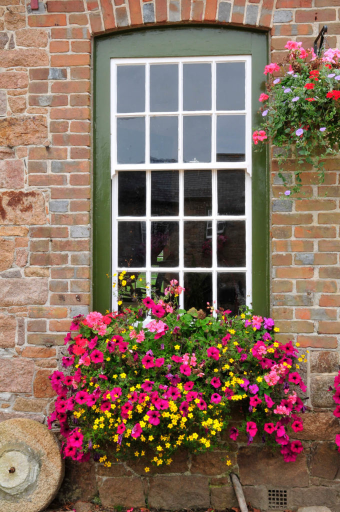A beautiful window box filled with small yellow flowers, pink petunias, and light pink geraniums.