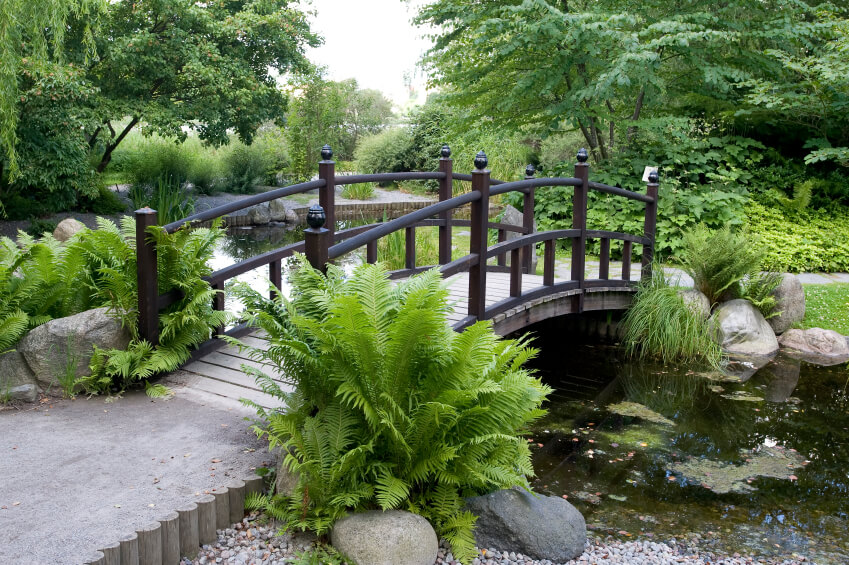 The pressed dirt pathways on either side of this elegant dark wood bridge are edged with wood. Off the path, small stones lead to the edge of the water.