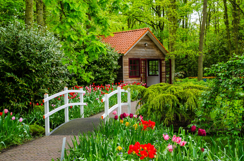 A Simple Fence Like Bridge Leads Through Tulips To A Small Cottage. The Bold