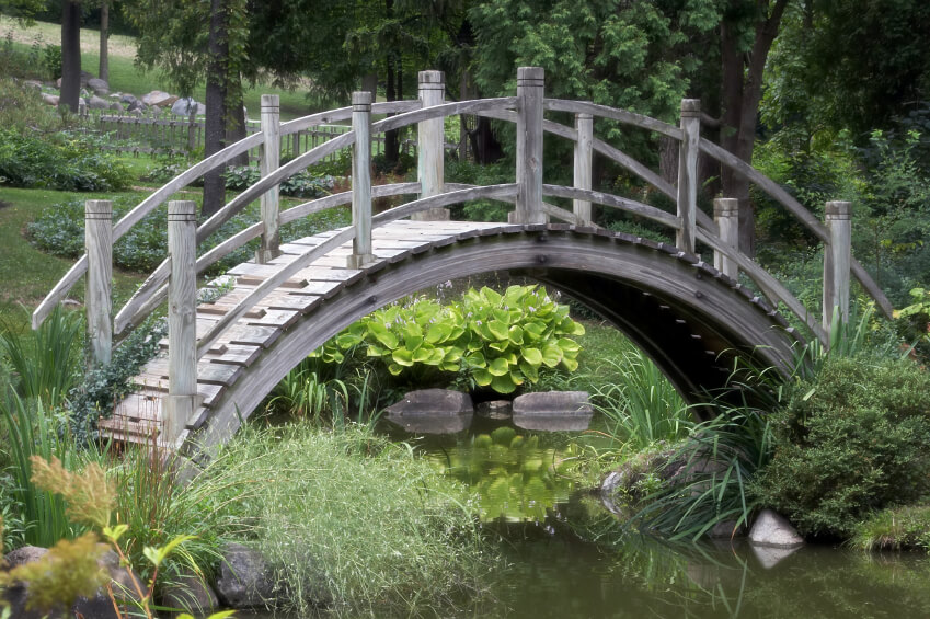 Arched wooden bridge over an algae filled pond.