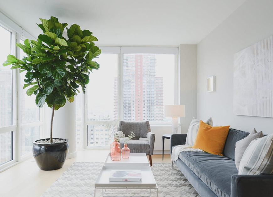 Here we have a full view of the living room. The furniture arrangement, popping with a single large orange pillow on the grey sofa, subtly enhances the luxury while a large green tree ads a natural touch.