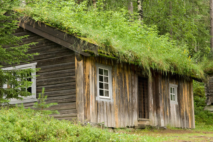 Upon This Rich, Rustic Home We See A Living Roof Absolutely Overflowing  With Growth,