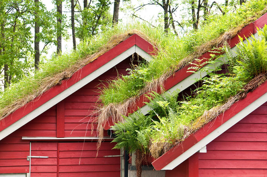 25 Amazing Buildings With Green Roof Designs Pictures