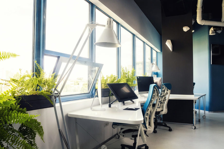 Here we can see the foliage and bright sunlight filtering through the line of windows in the main office space. This open environment feels fresh, and will not leave employees feeling trapped like cubicles typically do.