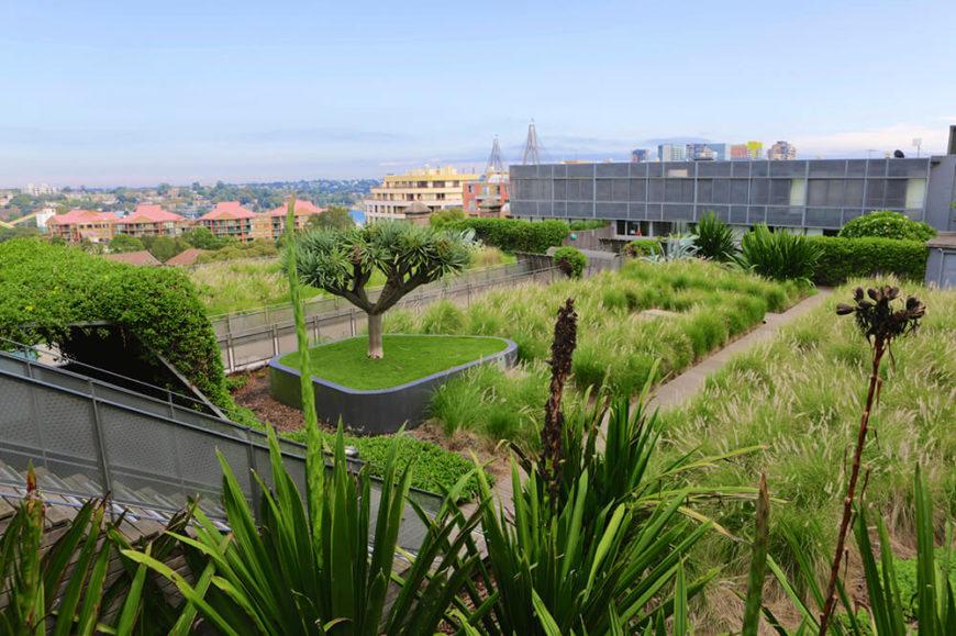 19 Relaxing Rooftop Garden Patios Great Photos