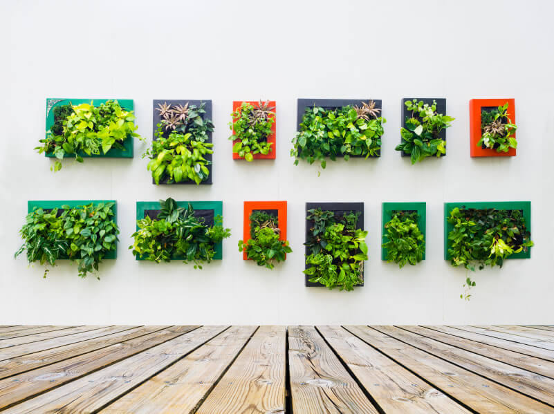 Make you deck an art gallery! These garden frames puncture the idea that art is in the eye of the beholder, for how could anyone deny these works of art? Grouping the various plant species a pleasing and sharp-looking arrangements will spruce up any tepid deck area.