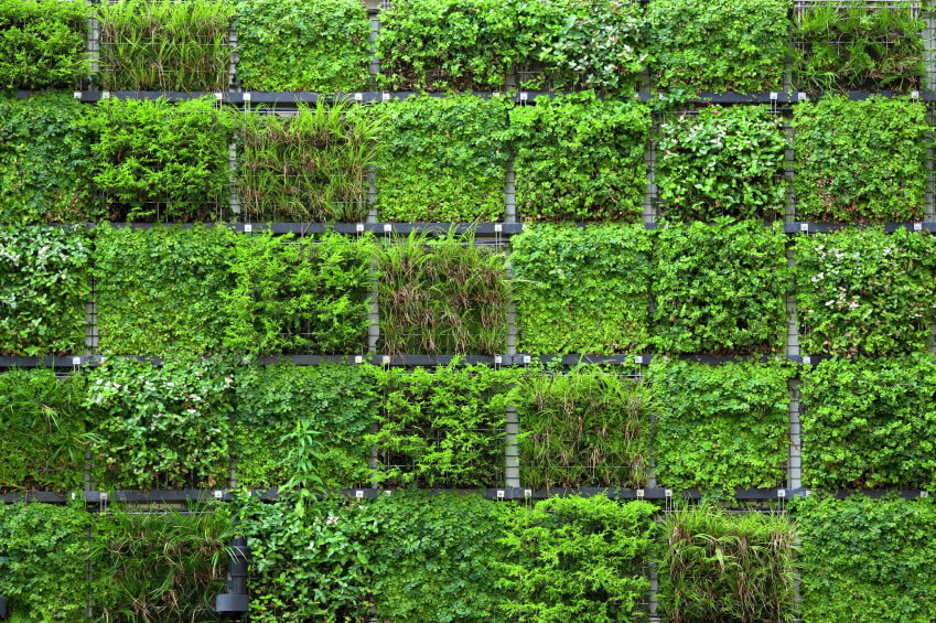 28 Vertical Garden Donu0027t Say Wall Gardens Cannot Be Diverse. In
