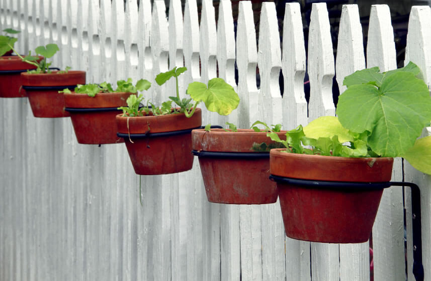 Rather than just hanging flower or plant pots at the tops of fence posts, installing pot brackets below the tops of the fence provides ample room to grow without blocking the tapered posts at the top of a fence.
