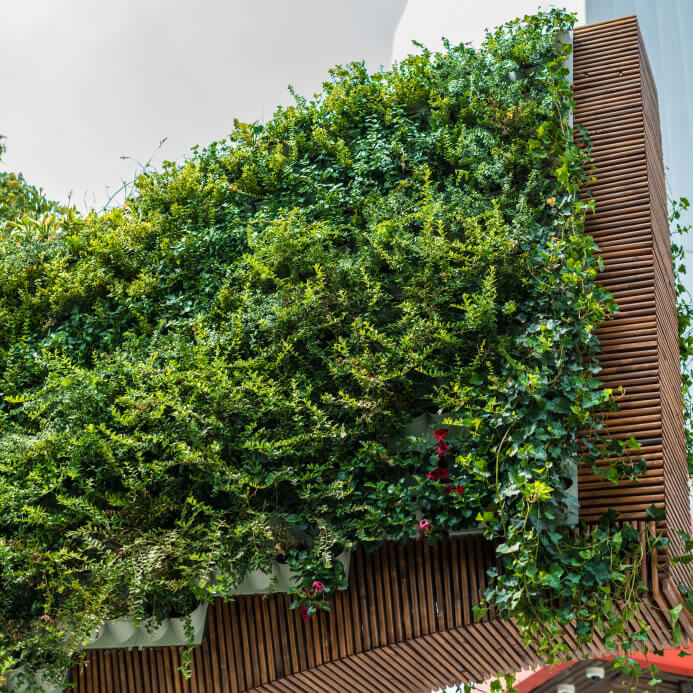34-vertical-garden The green wall idea was first proposed in 1938 by Professor Stanley Hart White of the University of Illinois Urbana-Champaign. Then termed a 'Vegetative-Bearing Architectonic Structure and System', White conceived of buildings engulfed with vegetation, similar to many of the buildings presented here Unfortunately, White died before he could see his idea come into full bloom.