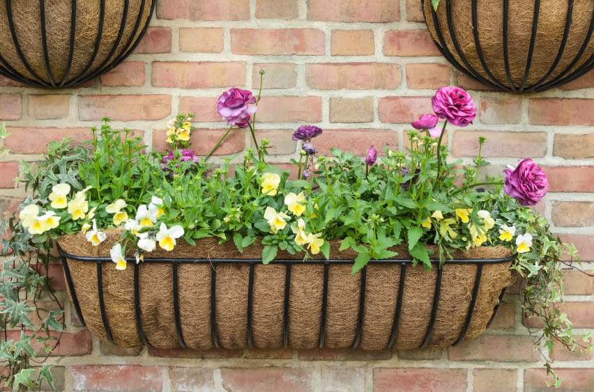Burlap and other porous materials provide a simple and stylish way to display your flowers. On top of being visually pleasing, this method will ensure your flower's roots are properly drained