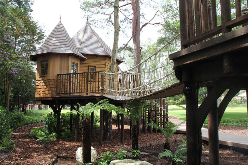 Under the tree houses are pathways of multure dotted with ferns to enhance the feeling of being in the forest.