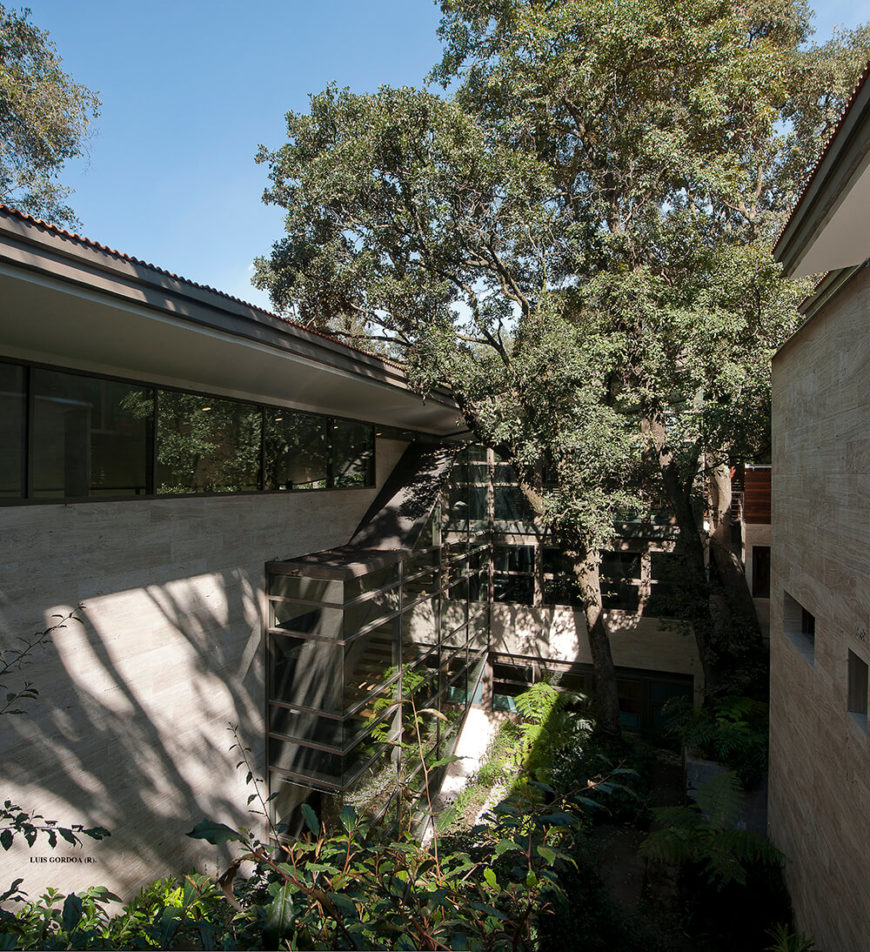 Here we have a look at the vast open courtyard at the center of the home. This space is wrapped in manmade structures, but flush with native foliage that was carefully built around.