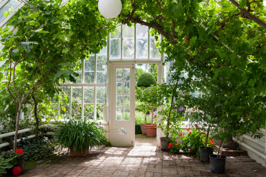This inside view of a roomy greenhouse shows how you can use the space in a : greenhouse decorating ideas - www.pureclipart.com