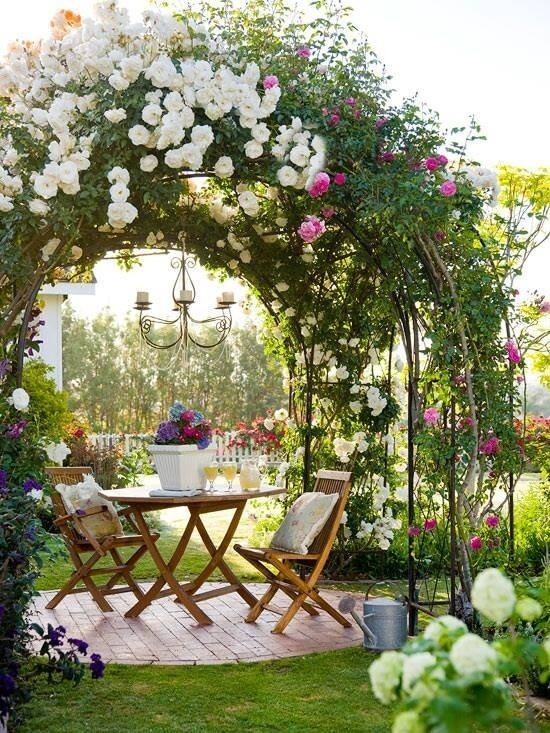 roses are an excellent way to transform a small patio into a private oasis perfect - Backyard Rose Garden