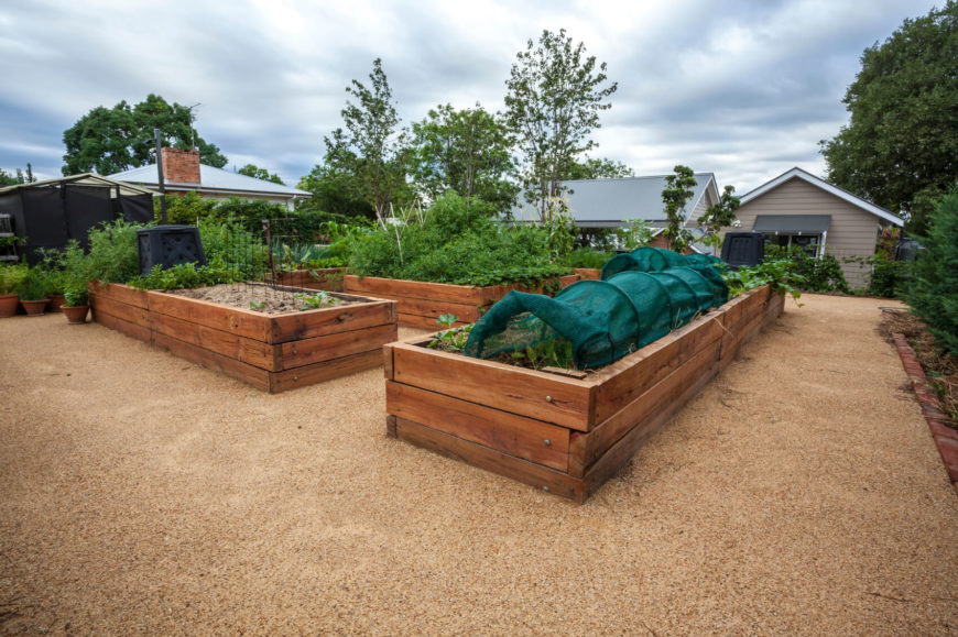 There are a number of long raised garden beds in a wonderful gardening area. On some of the beds there are coverings over the plants. The wood is thick and sturdy so that these beds will last for some time.
