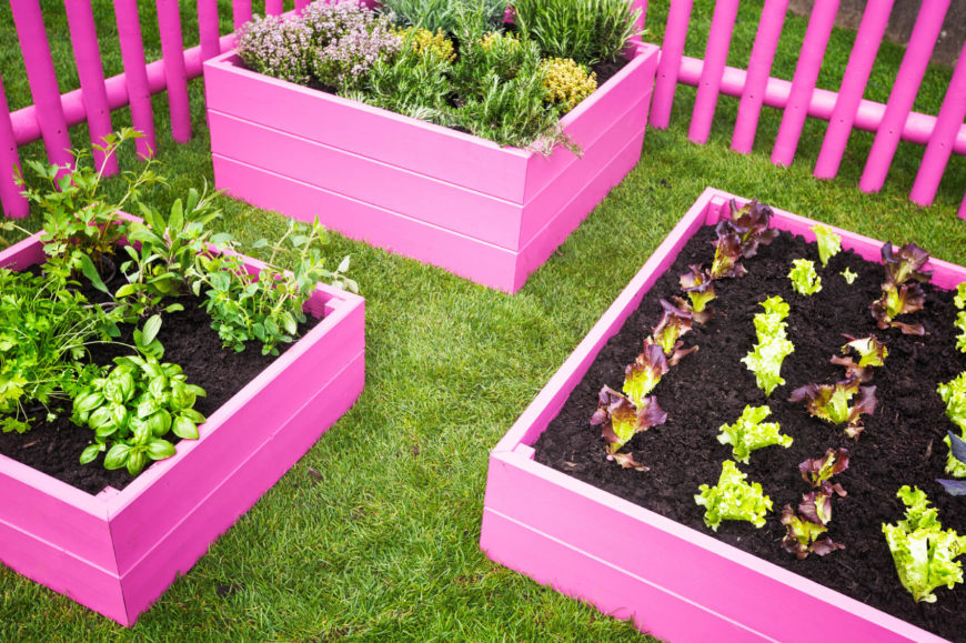 Here are some small and pretty raised garden beds. Painting your garden beds is always an option. When you do this you can make your garden beds fit in with nearly any style.