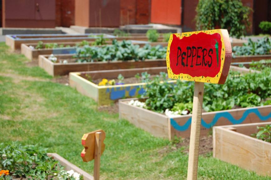 fantastic backyard vegetable garden ideas, Backyard Ideas