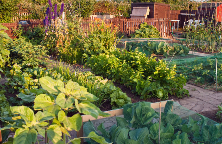 Raised vegetable garden ideas and designs - 24 Fantastic Backyard Vegetable Garden Ideas