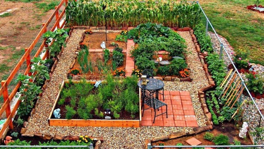 24 fantastic backyard vegetable garden ideas for Vegetable garden box layout