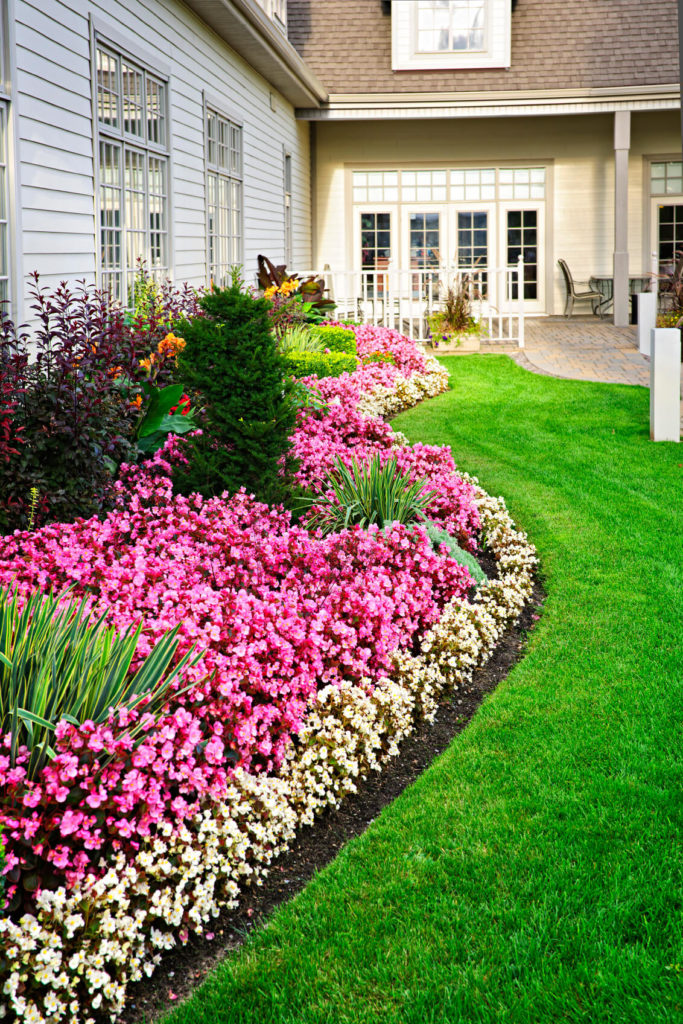 25 magical flower bed ideas and designs for Flower designs for yards