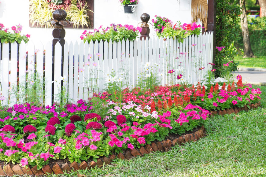 Light pink, magenta, and white flowers are the perfect adornment for a classic white picket fence. Around the bottom of the fence and hanging over the top, flowers can transform a simple picket fence into an amazing draw that can liven up any yard.