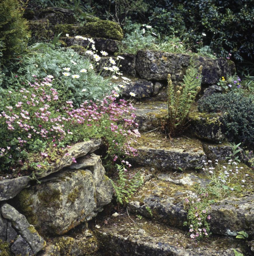 32 Backyard Rock Garden Ideas on Backyard Rock Ideas  id=79840