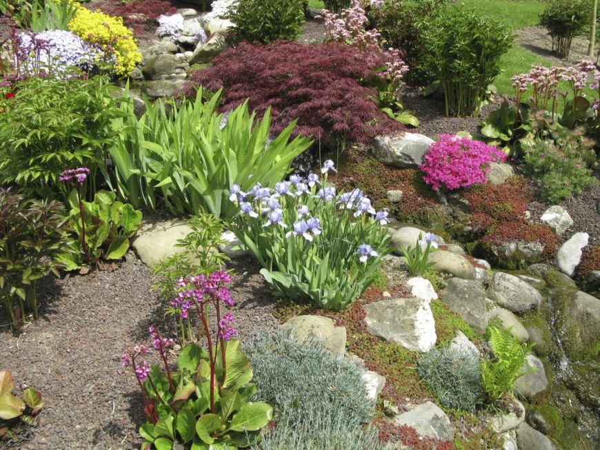 32 backyard rock garden ideas for Landscaping rocks and plants
