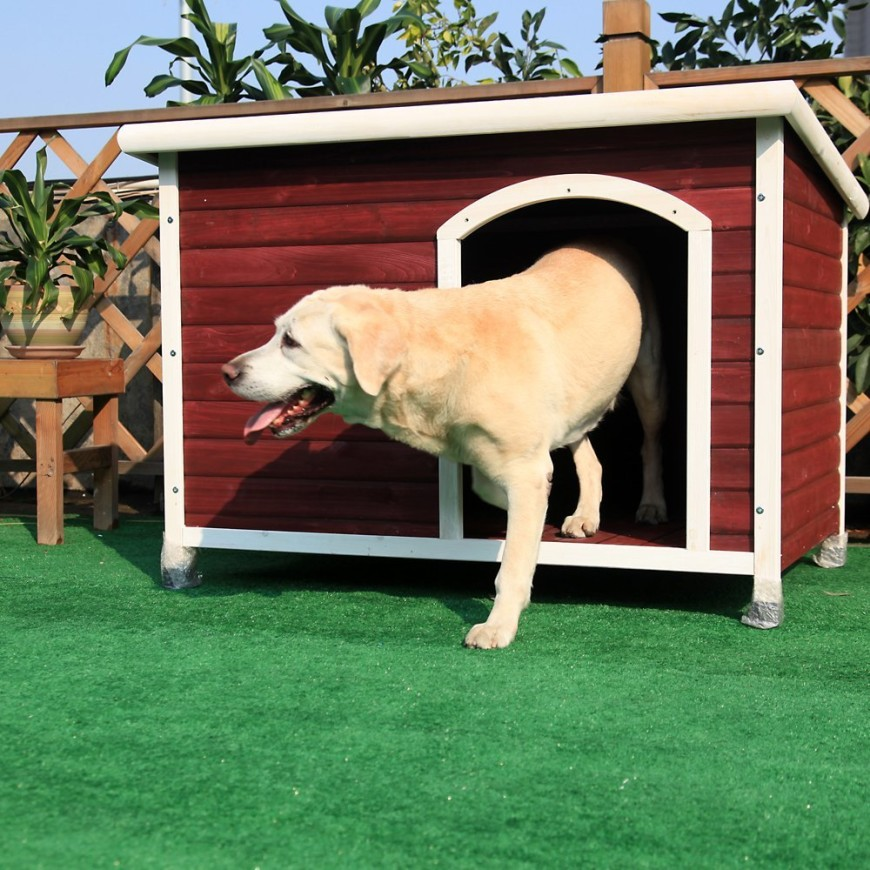 This barn red dog house is perfect for any country style home, and is elevated enough to keep moisture out of the bottom should it be rainy or muddy.
