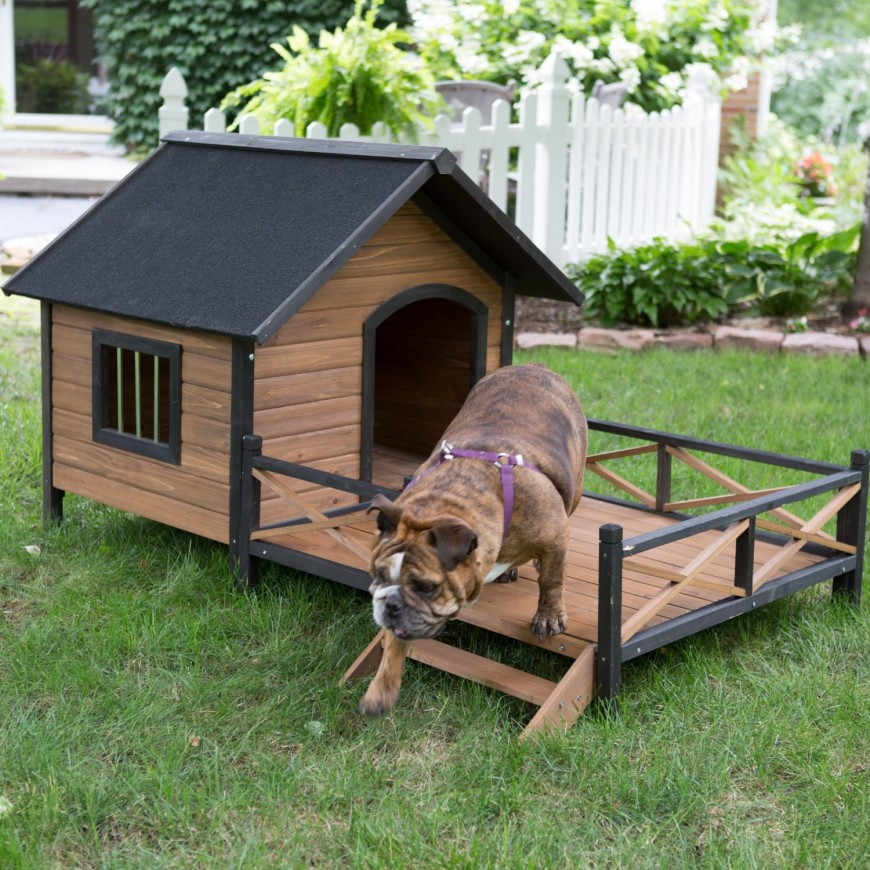 This small dog house has its own deck, stairs, and even a little window! The size is great for a small, short dog, and will look attractive in your backyard.