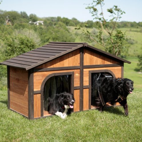 Plastic doggie doors and dual entrances make this dog-duplex excellent for a family with more than one pooch. The simple design would look great in any backyard.