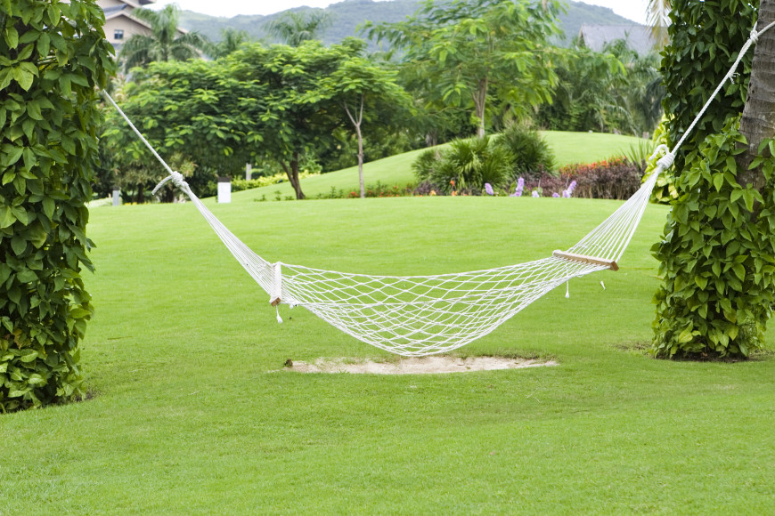 a spreader bar hammock hung between two vine covered trees  the loose weave 38 lazy day backyard hammock ideas  rh   homestratosphere