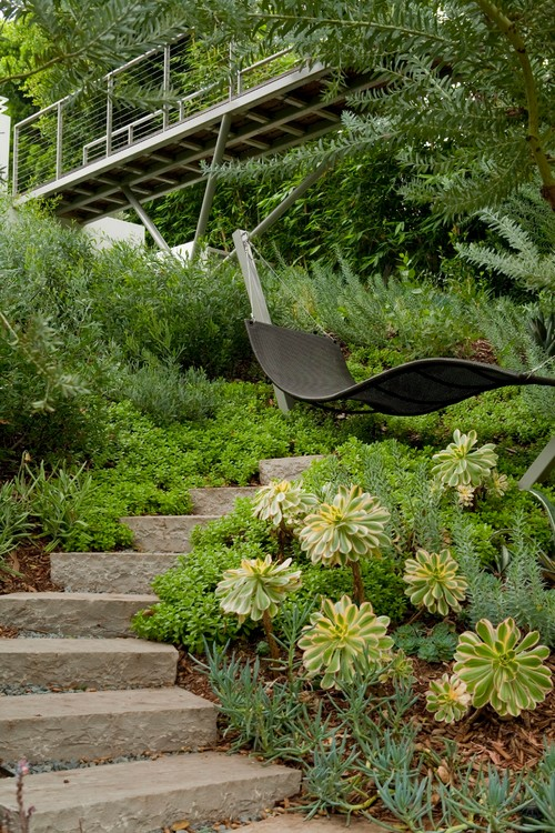 The structure of this hammock is strictly shaped, which is unusual for a hammock, but is suspended between two poles at the top of a set of stone stairs leading through a succulent garden.