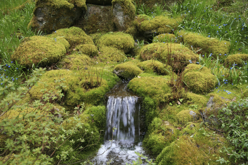 A Water Feature Is Common In Japanese Gardens. Waterfalls Bring Motion And  Sound To The