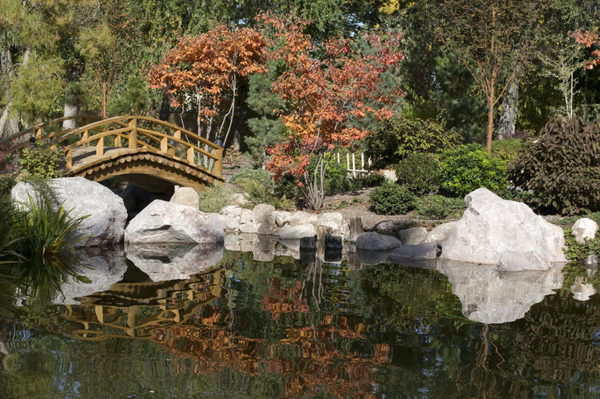 Rocks are very important to Japanese gardens. They are often even more important than trees. The placement and number of rocks can have a big impact on your garden. Be mindful of where the rocks in your garden are placed.