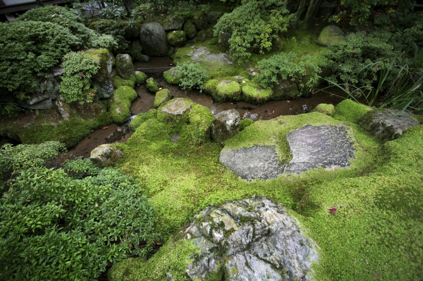 Moss Can Be A Good Element To Bring Out The Sense Of Age To Your Garden