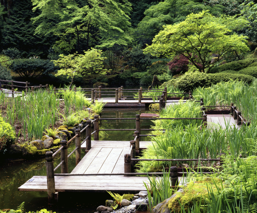 When you have a great deal of water in your Japanese garden, you can use a system of bridges to navigate the space. If the bridge has a Japanese influence with organic looking features it will fit right in with the rest of the landscape.