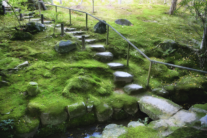 Here is a simple garden with a stone staircase between some moss covered stones. Sparse trees are spread through the space making good use of the area without overcrowding it.