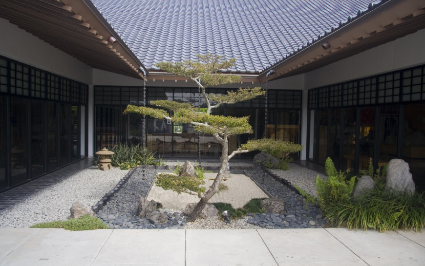 A single tree is a great addition to a zen garden. It provides contrast but has plenty of organic and natural appeal.