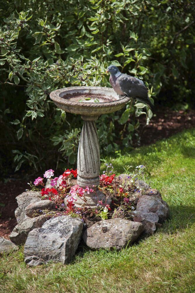 46 Splashy Bird Baths
