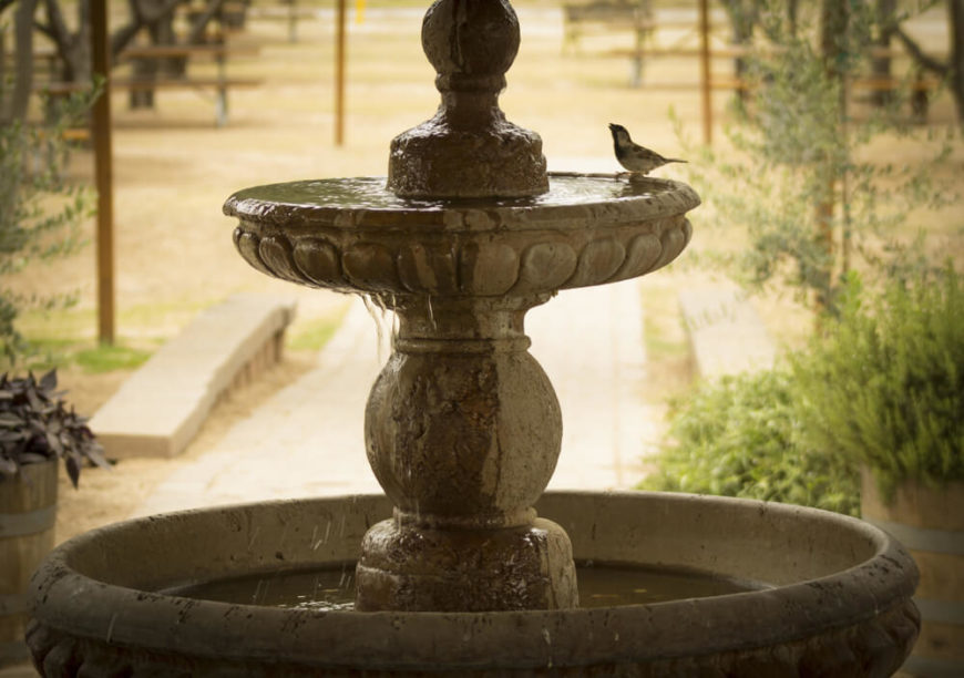 This Classic Fountain And Bath Is Being Visited By A Bird Looking For The  Perfect Spot